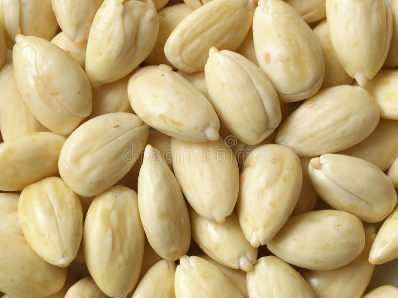 Amandes blanchies photographie stock libre de droits