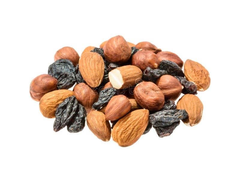 Amandes, noisette et raisins secs d'isolement sans ombre photographie stock