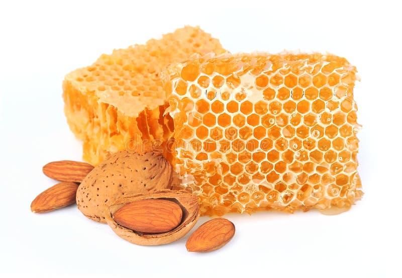 Amandes nuts avec le nid d'abeilles photographie stock libre de droits