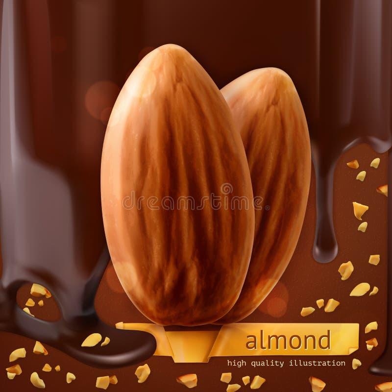 Amandes sur le fond de chocolat illustration de vecteur