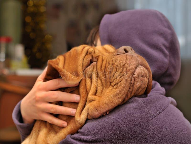 Amando um cão fotografia de stock royalty free