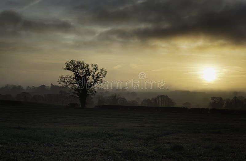 Amanecer en el campo de Staffordshire fotografía de archivo