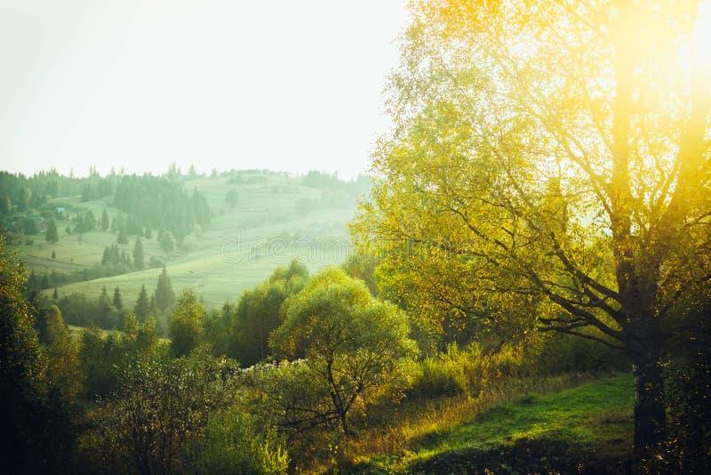 Amanecer en las montañas foto de archivo