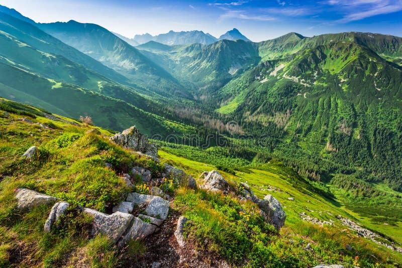 Amanecer hermoso en las montañas de Tatras, Polonia foto de archivo