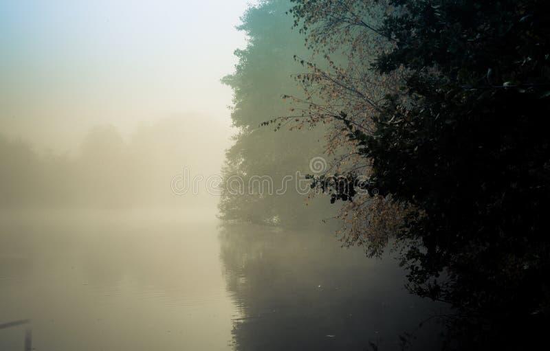 Amanezca en el parque Woking Surrey Inglaterra de Goldsworth en el lago brumoso en d imágenes de archivo libres de regalías