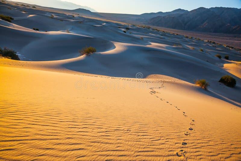 Amanhecer em um parque original em Calif?rnia foto de stock royalty free