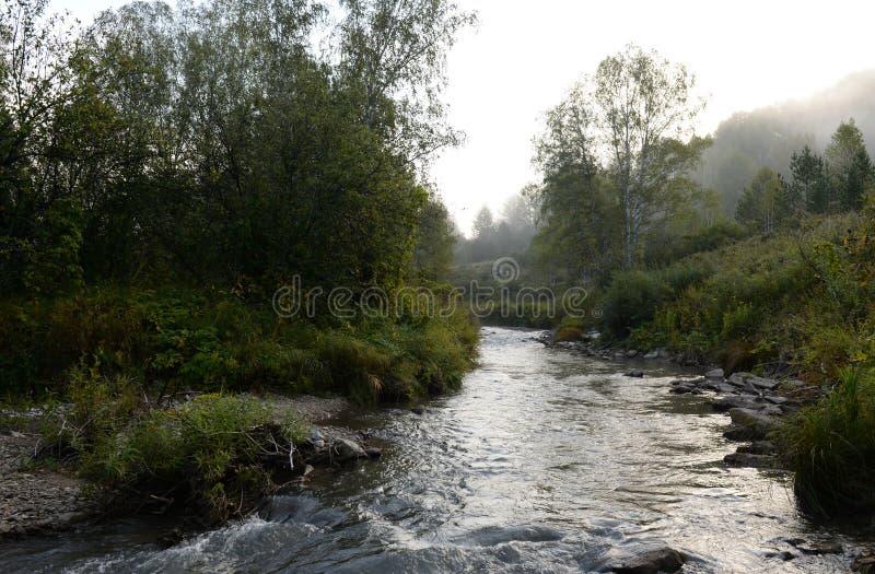 Amanhecer em um rio Yarovka da montanha em Sibéria ocidental foto de stock royalty free