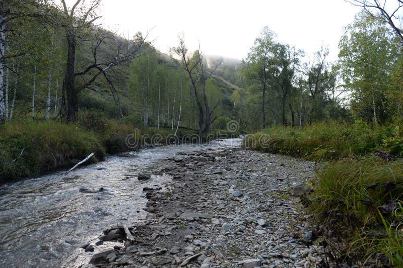 Amanhecer em um rio Yarovka da montanha em Sibéria ocidental fotografia de stock royalty free
