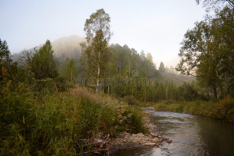 Amanhecer em um rio Yarovka da montanha em Sibéria ocidental imagens de stock