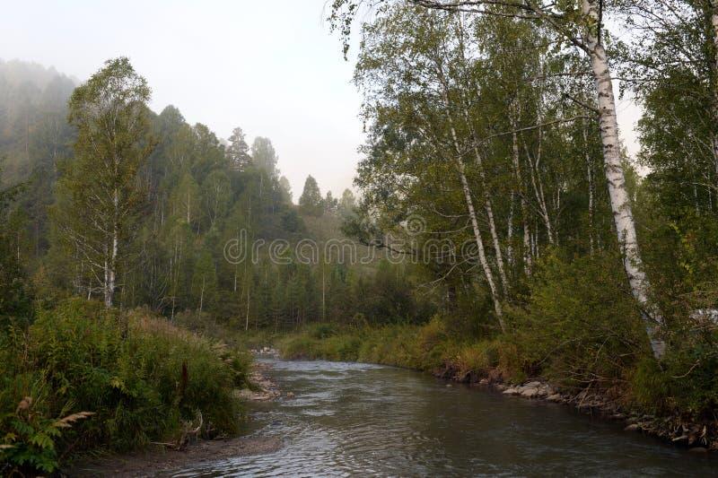 Amanhecer em um rio Yarovka da montanha em Sibéria ocidental fotos de stock royalty free