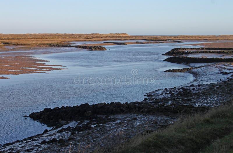 Amanhecer, marés para fora, negligenciando a região pantanosa foto de stock
