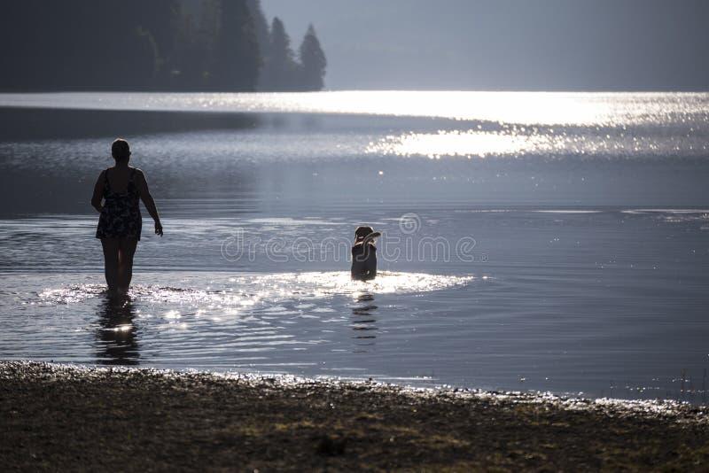 Amanhecer no lago da montanha switzerland imagens de stock royalty free