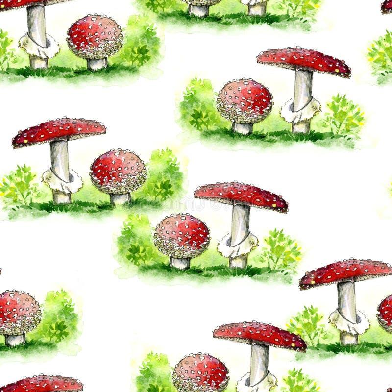 Amanita Βοτανικό άνευ ραφής σχέδιο με τα κόκκινα μανιτάρια και τα κίτρινα χνουδωτά κοτόπουλα, τα καπέλα, τη χλόη και τις πικραλίδ ελεύθερη απεικόνιση δικαιώματος