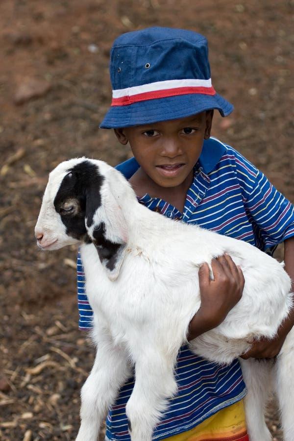 Download Amante animale immagine stock. Immagine di infanzia, podere - 3893099