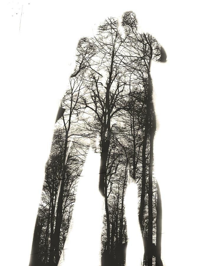 Amantes da árvore fotografia de stock royalty free