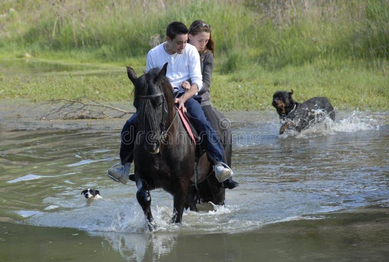 Amantes da equitação imagem de stock royalty free