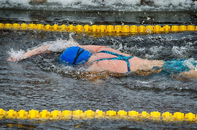 Amantes de la natación del invierno El nadador nada en la piscina fotografía de archivo