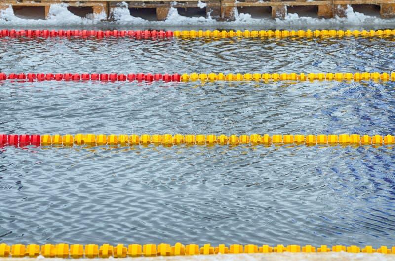 Amantes de la natación del invierno El nadador nada en la piscina fotografía de archivo libre de regalías