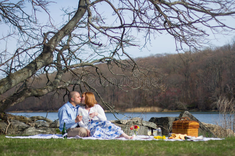 Amanti di picnic immagine stock libera da diritti
