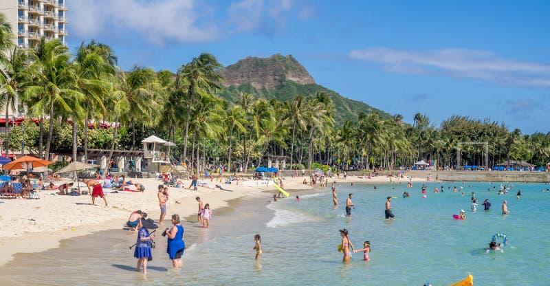 Amanti di Sun sulla spiaggia di Waikiki fotografie stock libere da diritti