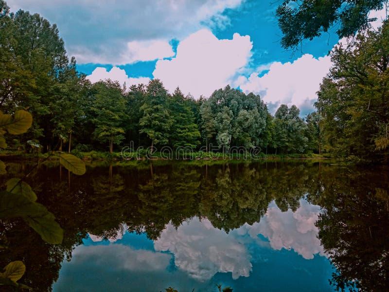 Amants de nature photo stock