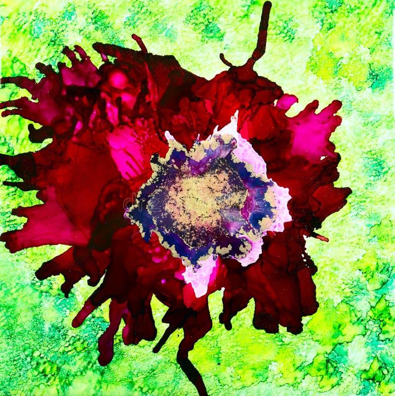 Amapola roja de la tinta stock de ilustración