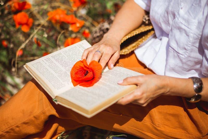 Amapola roja en las páginas abiertas del libro Hols de la mujer una flor de fred en el libro abierto mientras que lee foto de archivo libre de regalías