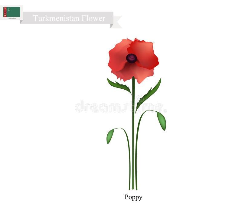 Amapola roja, la flor popular de Turkmenistán stock de ilustración