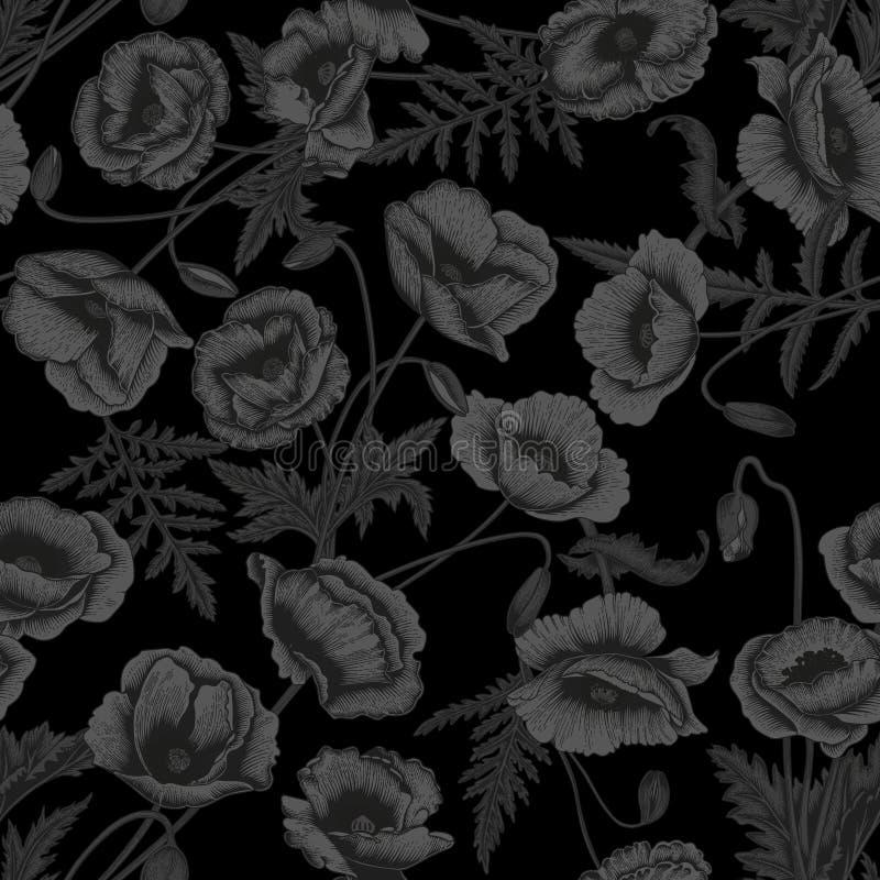 Amapolas Fondo inconsútil del vector en estilo del vintage Modelo de la planta Dibujo botánico Fondo negro stock de ilustración