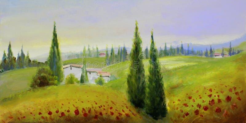 Amapolas pintadas en prado del verano fotos de archivo
