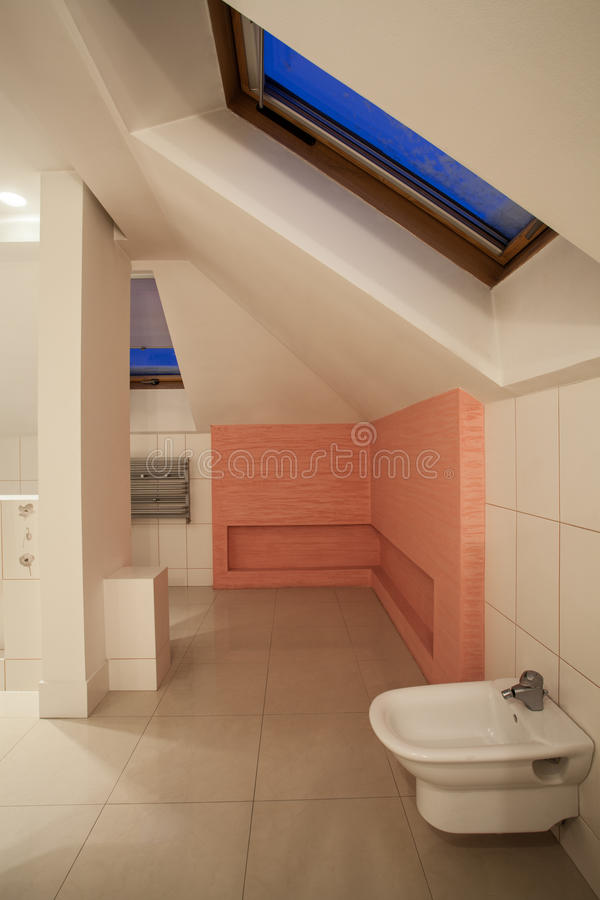 Download Amaranth House - White And Pink Bathroom Stock Image - Image: 29065109