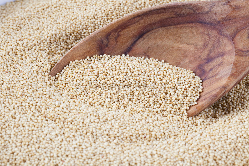 Amaranth with Spoon. Healthy amaranth grain, a staple food of the Aztecs and becoming popular as a health food stock photo