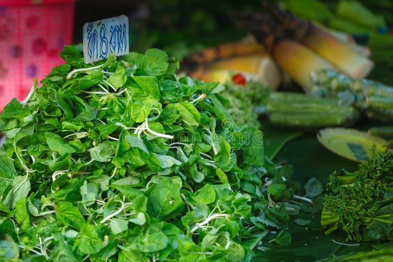 AmaranthAmaranthus-viridis, Gemüse stockbild
