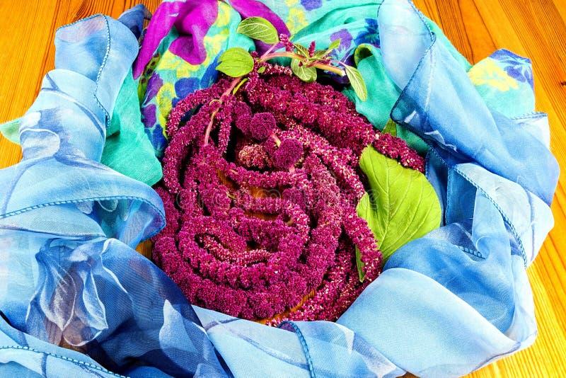 Amaranthus de bloemen van Caudatus, als Liefde worden bekend die ligt Aftappend royalty-vrije stock foto