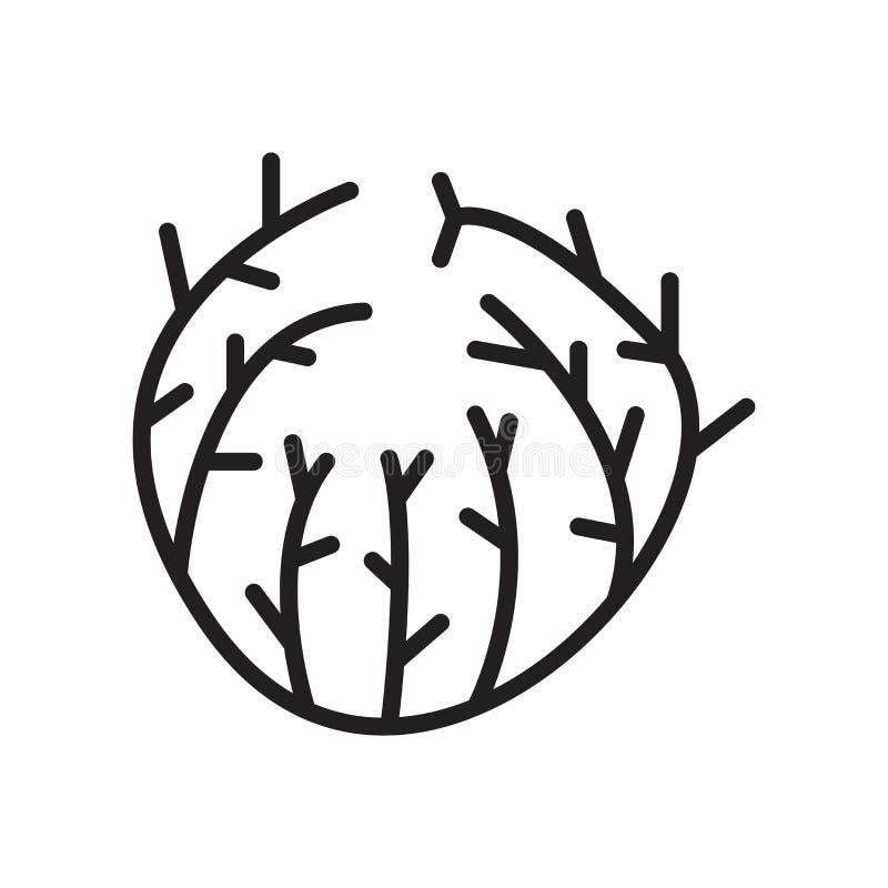 Amarantikonenvektorzeichen und -symbol lokalisiert auf weißem backgro vektor abbildung
