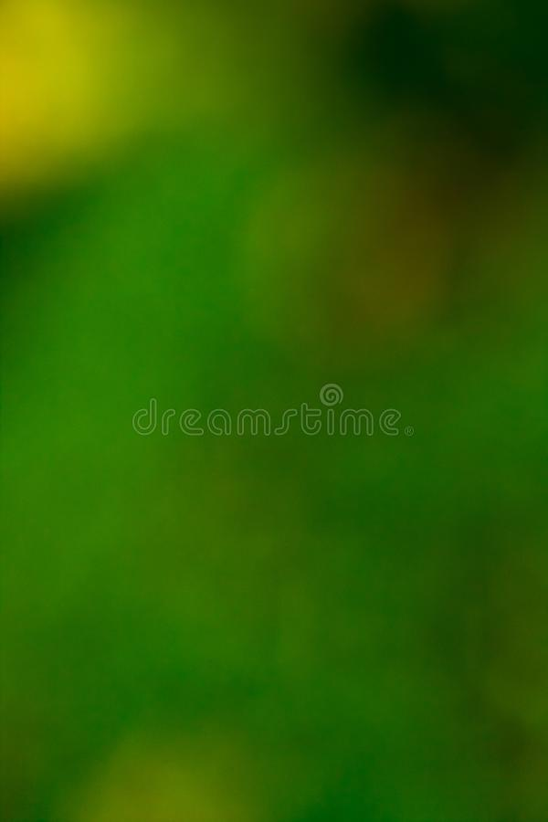 Amarelo abstrato do fundo, cores verdes foto de stock