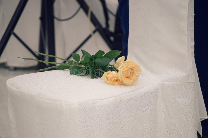 Amarelo, aumentou, fotografia de stock royalty free