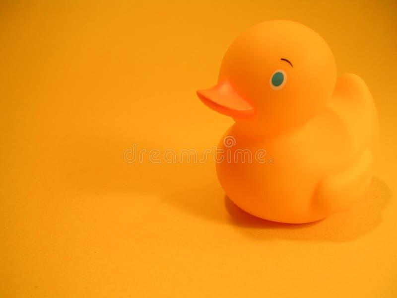 Amarelo de borracha do pato foto de stock