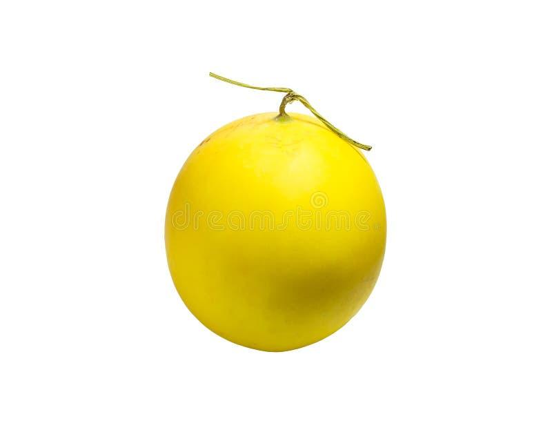 Amarelo do melão do cantalupo fotos de stock royalty free
