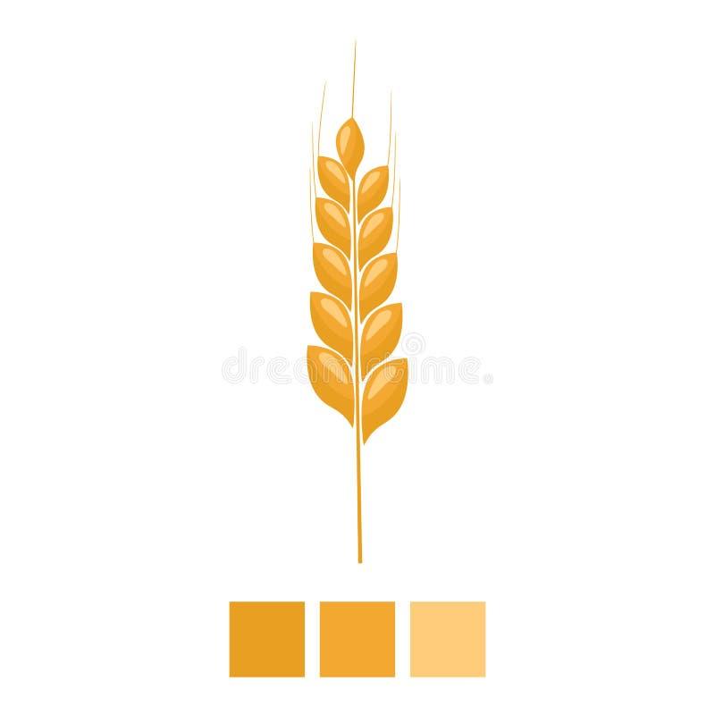 Amarelo do ponto do trigo isolado no fundo branco Grão orgânica da orelha com plano e projeto da cor sólida Ilustração do vetor ilustração royalty free