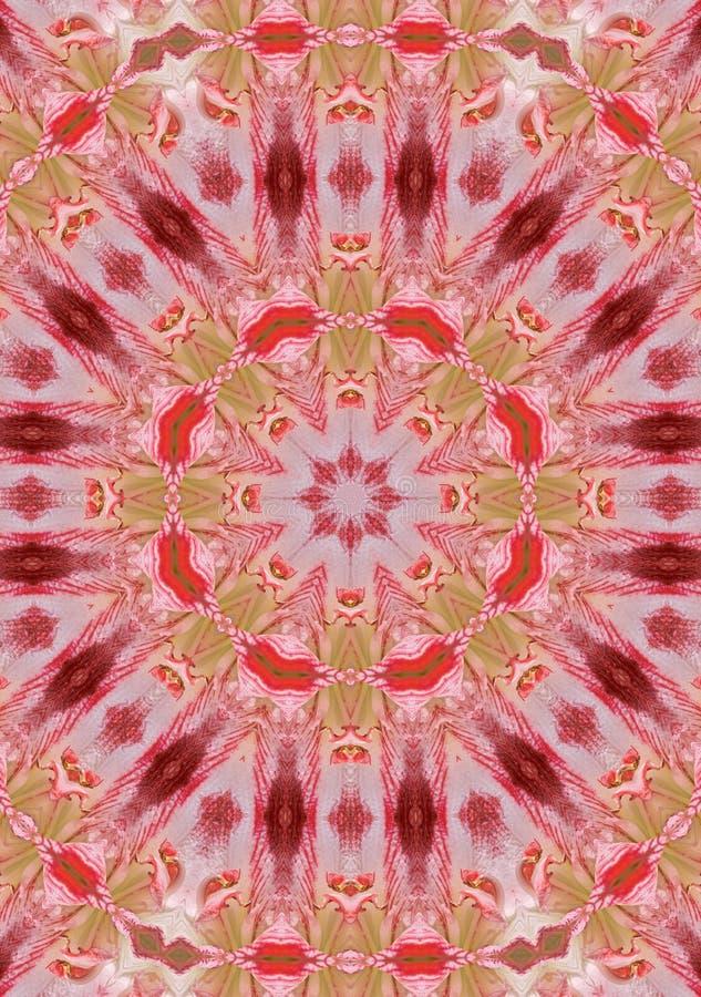 Free Amarilis Mandala Royalty Free Stock Images - 283989