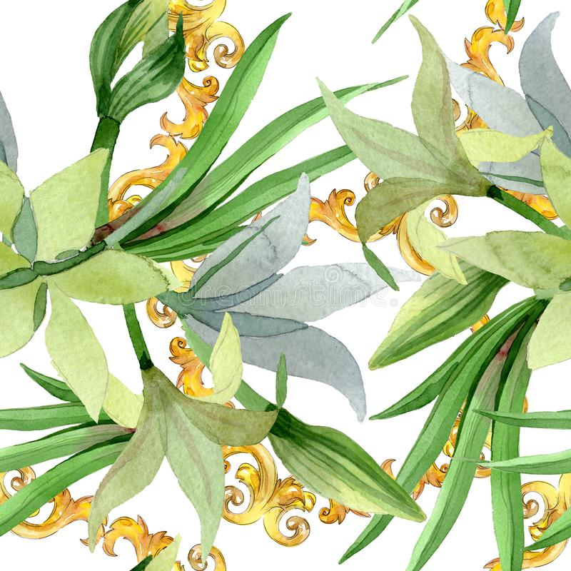 Amaryllis kwieciści botaniczni kwiaty Akwareli t?a ilustracji set Bezszwowy t?o wz?r ilustracja wektor