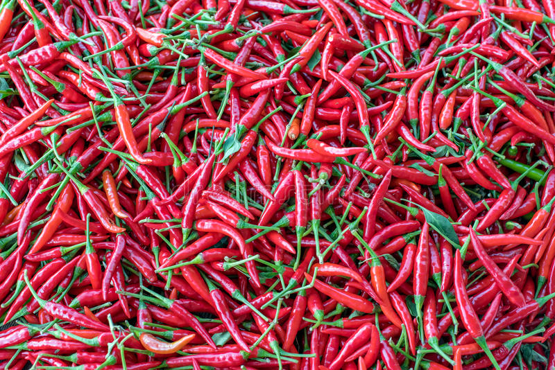 Amas de Chili Peppers rouge image stock
