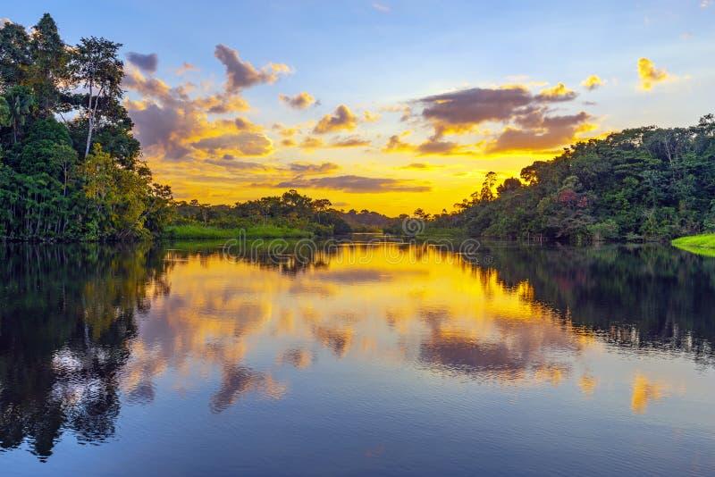 AmasonRainforestsolnedgång, Sydamerika fotografering för bildbyråer