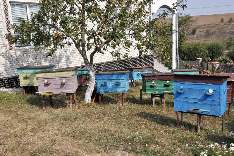Amatörmässig bikupa nära house_2en royaltyfri foto