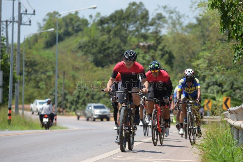 Amatörmässig cyklist som de konkurrerar i ett välgörenhetprogram royaltyfri fotografi