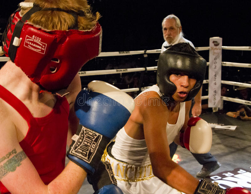Amateur Boxing stock photography