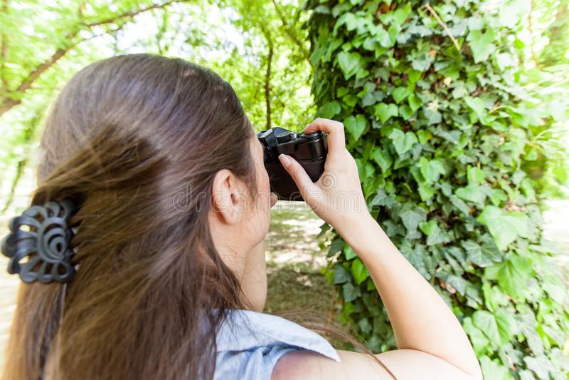 Amateurphotograph Nature stockfotos