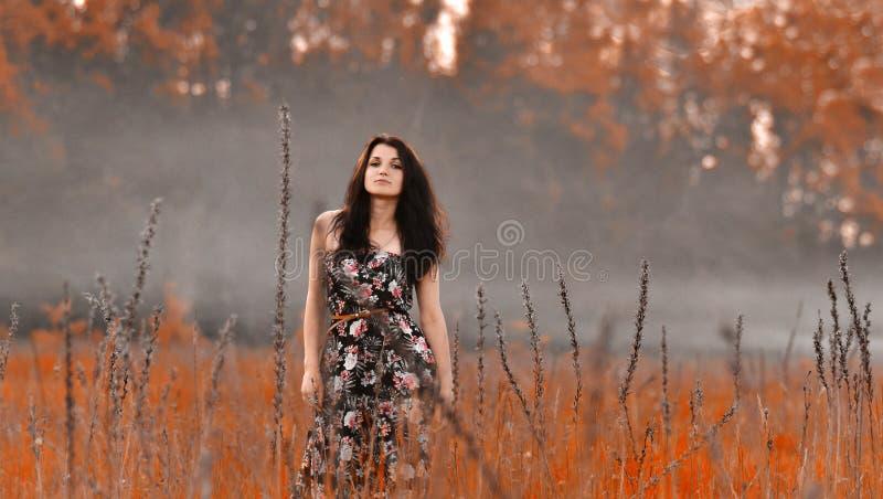 Amathing natur med rök royaltyfria foton
