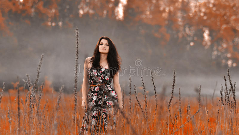 Amathing-Natur mit Rauche lizenzfreie stockfotos